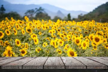 Empty wood Shelf on sunflower field background