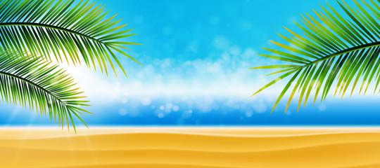 Strand, Wasser, Palmen
