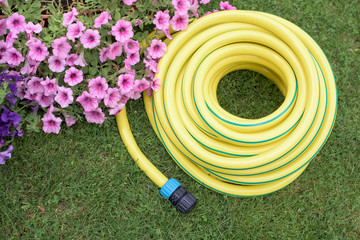 Plastic hose-pipe in the garden