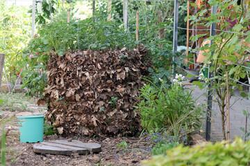 Kartoffelturm im Garten
