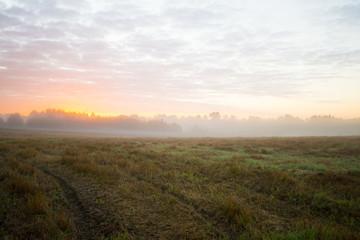 sunrise in fields.