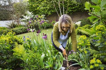 Woman standing in  a garden, holding a gardening trowel, digging in between flowers in a flowerbed.