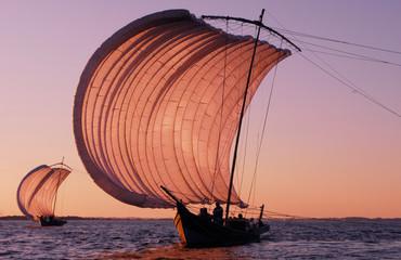 霞ヶ浦の帆曵き船の白い帆が夕日に染まる