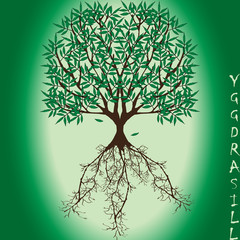 Yggdrasil – vector World tree from Scandinavian mythology. Ash Yggdrasill with green leaves and deep-reaching roots is a symbol of the universe