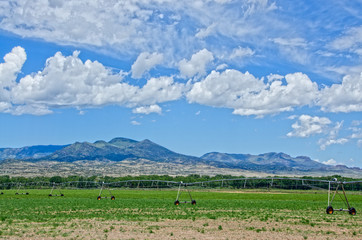 Irrigation in the San Luis Valley