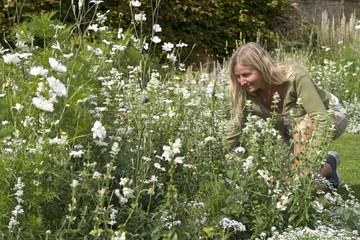 Mature Woman Working In Flower Beds Of Summer Garden