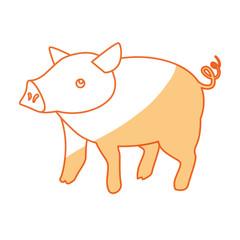 Pig farm animal