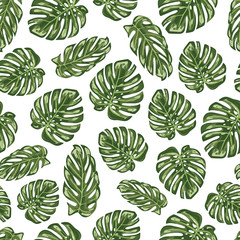 Monstera leaf seamless pattern background