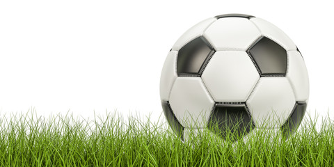 Soccer ball concept on the grass, 3D rendering