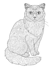 Cat doodle coloring book page for adults. Vector illustration isolated on white background.