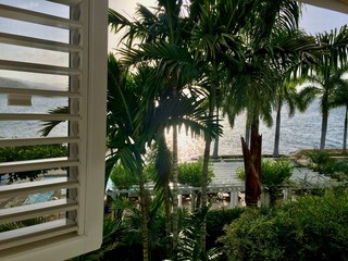 Sunset in luxurious tropical resort (hotel) with blue sky, white shutters, private pool, lush green coconut palm trees & blue ocean in Montego Bay on the Caribbean island of Jamaica (West Indies)