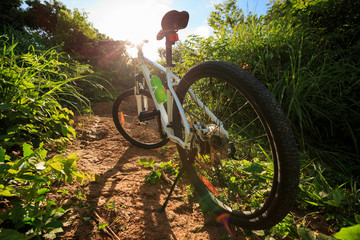 mountain bike on sunrise summer forest trail