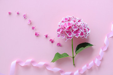 Wall Mural - ピンクのあじさい