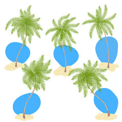 Set of palm trees with sand and blue sky