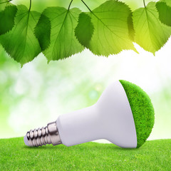 Eco LED bulb in grass. Energy saving lamp.