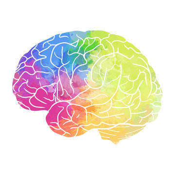 Human brain with rainbow watercolor spray on a white background. Vector element for your design