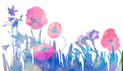 flowers - watercolors picture