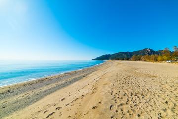 Golden shore in Marina di Cardedu beach
