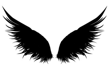 Wings. Vector illustration on white background. Black and white style