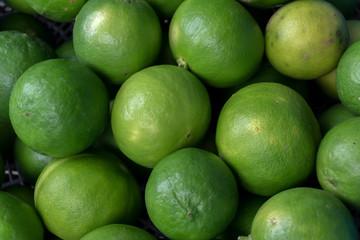 clean lemon fruit  from organic farm..