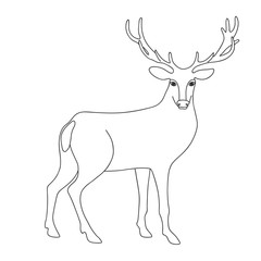 Isolated black outline monochrome deer on white background. Curve lines. Page of coloring book.