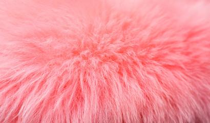 Pink Fur Fototapete