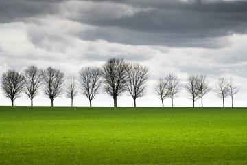 campagne champ culture agricole horizon arbre silhouette contre jour nuage orage tempête menace météo pluie