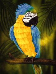 Colorful Ara sitting on an old branch in a jungle, painting