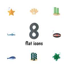 Flat Icon Marine Set Of Tortoise, Cachalot, Shark And Other Vector Objects. Also Includes Turtle, Humpback, Conch Elements.