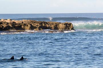 Waves on Oahu, Hawaii