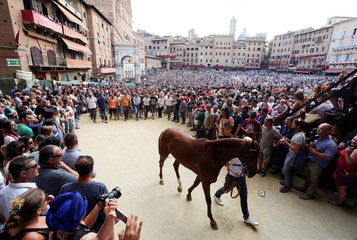 "The horse of the ""Selva"" (Forest) parish is escorted by a groom and followed by supporters as they leave Del Campo square in Siena"