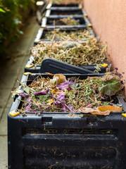 Compost,waste in bin. .