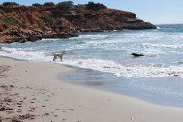 Ibiza hiking during the Low Season