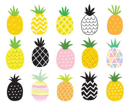 Vector illustration set of pineapple in different styles.