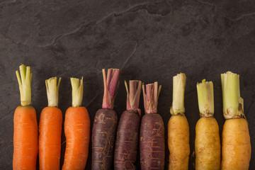 Baby Rainbow Carrots on Grey Slate Background
