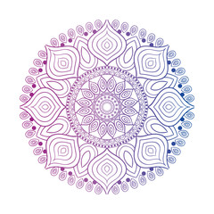 Beautiful mandala desing flower design indian vector icon