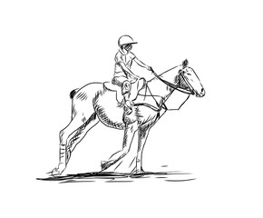 Sketch of Horse Hockey in vector.