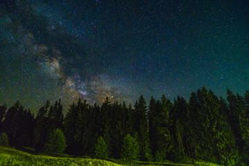 Landscape of night with trees and stars in the sky