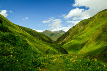 Papiers peints Montagne The green Caucasian valley in summer looks like Alps