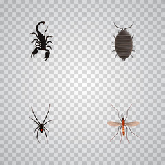 Realistic Poisonous, Gnat, Dor And Other Vector Elements. Set Of Insect Realistic Symbols Also Includes Alive, Spider, Spinner Objects.