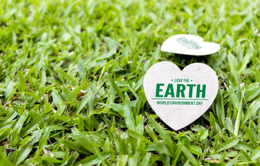 save environment day concept. paper heart on green grass with soft-focus and over light in the background