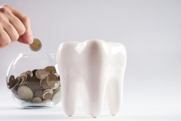 Tooth and piggy bank with coins  isolated on white background with copy space.Financial Concept Dentist Money concept.