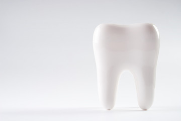 White healthy human tooth isolated on a white background with copy space. Dental health Concept. Oral Care.