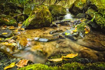 Rio en otoño / River in fall