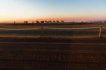Horses Riders Silhouetted Dawn