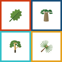 Flat Icon Ecology Set Of Alder, Baobab, Wood And Other Vector Objects. Also Includes Wood, Park, Leaf Elements.