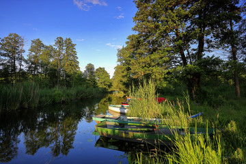 poranek nad rzeką Pisą