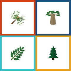 Flat Icon Bio Set Of Acacia Leaf, Park, Baobab And Other Vector Objects. Also Includes Leaf, Tree, Leaves Elements.
