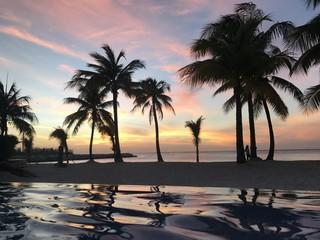 Coucher de soleil paradisiaque sous les palmiers