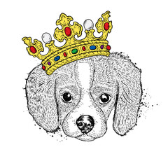 Lovely puppy in the crown. Vetch illustration for postcard or poster, print on clothes. Pedigree dog.